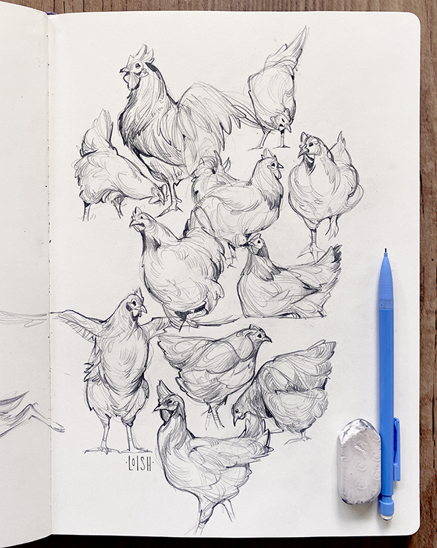 2020 // animal sketches